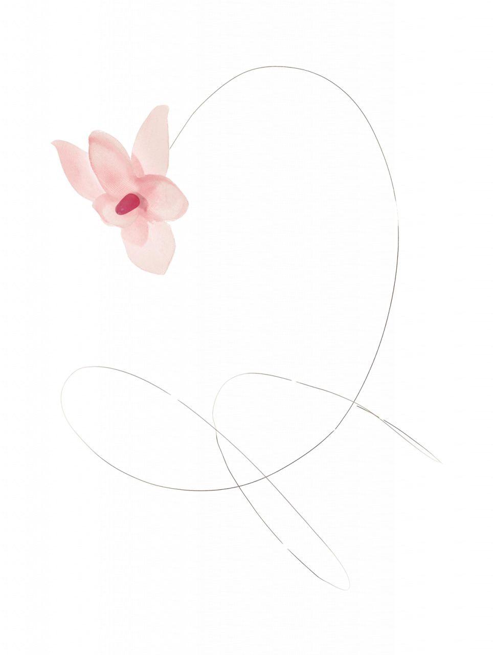 Orchideenblüten am Draht, ros