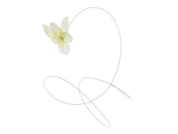 *Orchideenblüten am Draht, wei