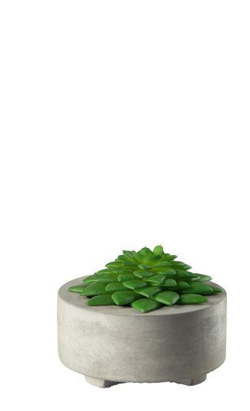 Dekopflanze aus Kunststoff im grauen Betontopf
